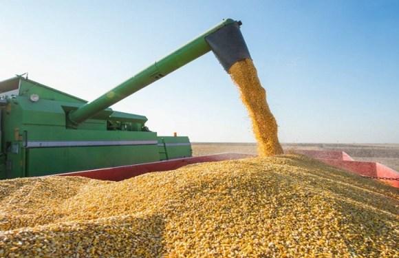 Exportações da agropecuária brasileira crescem 115% em novembro