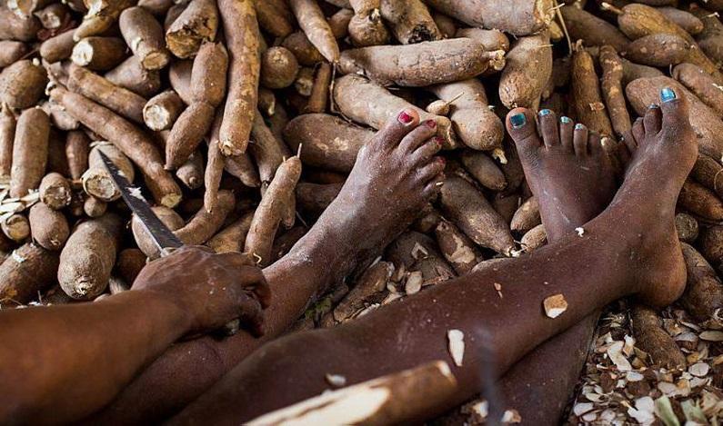 Governo publica portaria mais rigorosa sobre trabalho escravo