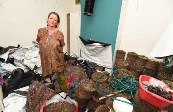 Mulher volta de viagem e encontra casa 'misteriosamente' lotada de maconha