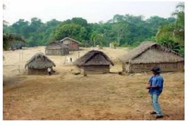 União, Funai e Estado de RO têm 30 dias para apresentar plano de proteção da terra indígena Karipuna