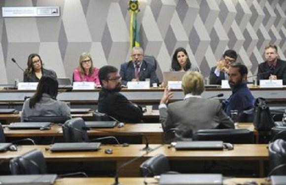 Surto de toxoplasmose assusta município gaúcho há quase três meses