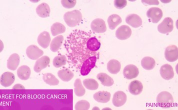 New Target for Blood Cancer Treatment
