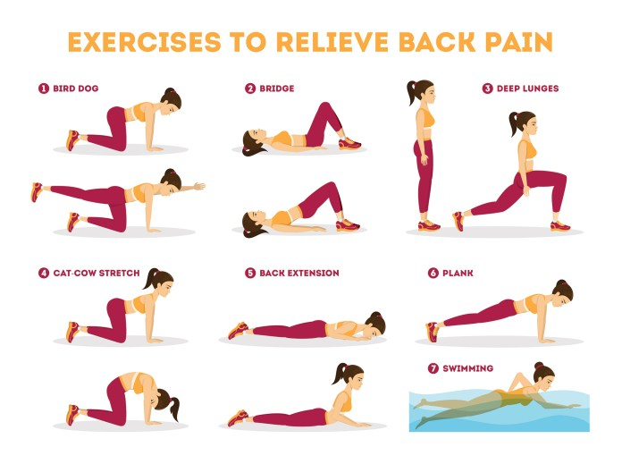 Back Pain Exercises Infographic