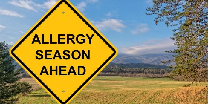 When is allergy season