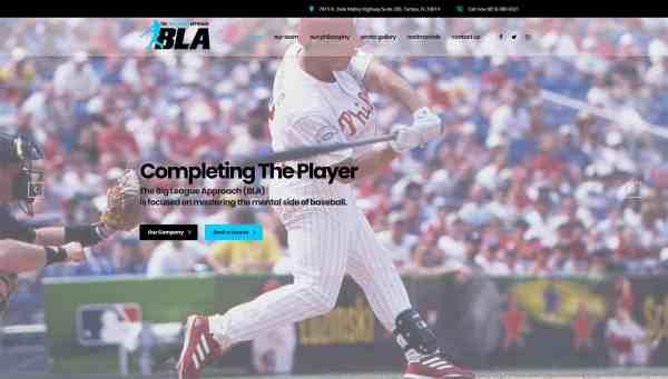 The Big League Approach Website