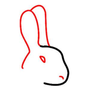 رسم ارنب 3 رسم أرنب للاطفال