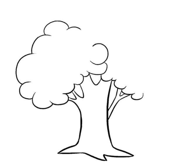 كيفية رسم شجرة للاطفال رسمات بسيطة بالرصاص