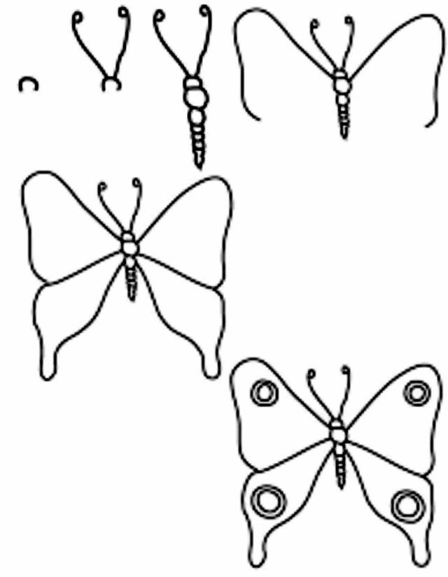 تعليم الرسم للاطفال خطوة بخطوة pdf رسمة فراشة ملونة