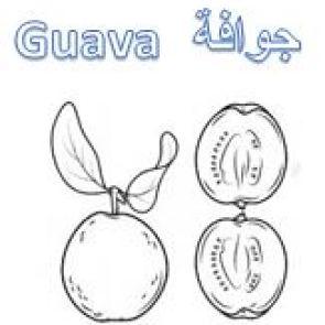 ورقة عمل تلوين الفواكه رسم جوافة للاطفال للتلوين