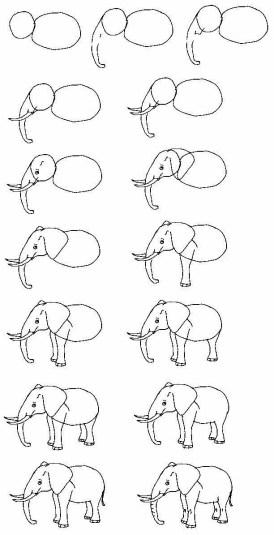 فيل رسم سهل رسومات فيل سهلة