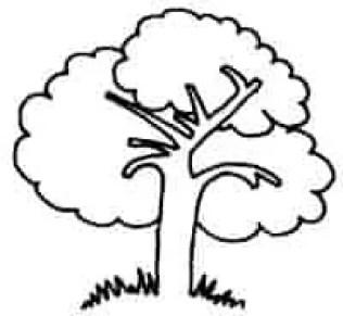 رسومات سهله للتلوين شجرة