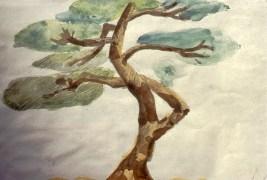 Image of cypress tree