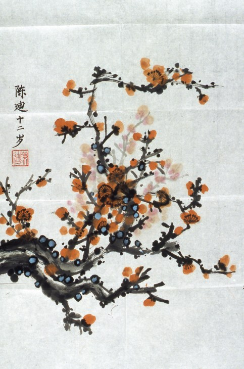 Image of blossoms and fruit