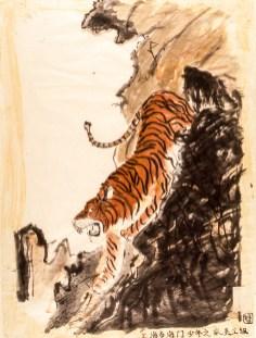 Image of a tiger descending a hillside