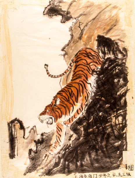Image of a tiger descending a hillside