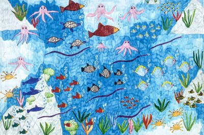 Image of fish and other creatures under the sea