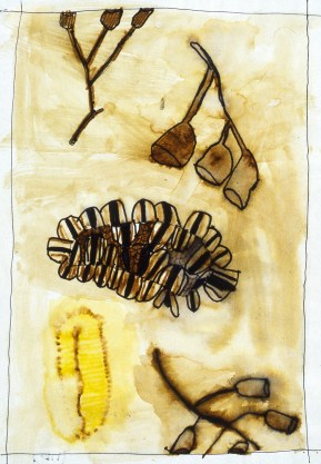 Painting of aboriginal artifacts made from bushes and natural materials