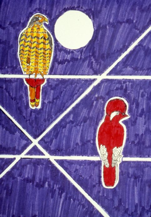 Drawing showing two birds on a wire at night