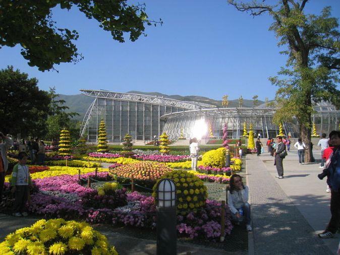 800px-Beijing_Botanical_Garden_-_Oct_09_-_IMG_1196