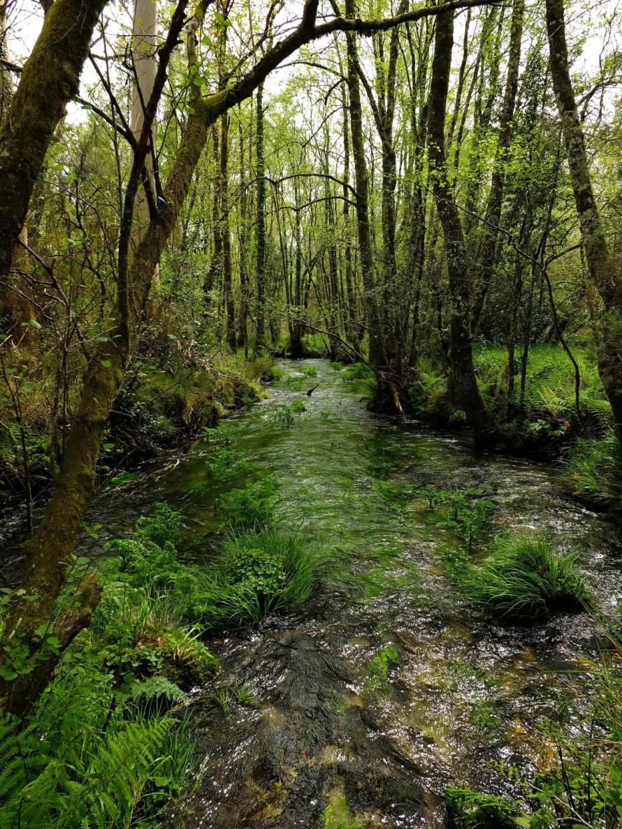 espa_a_paisajes_landscape_spain_galicia_pontevedra_cotobade_gaby1-407307.jpg!d