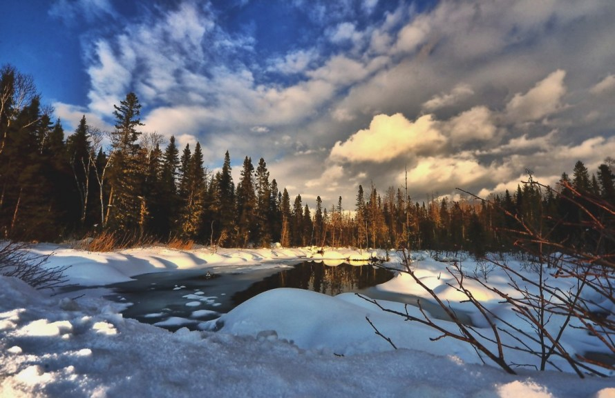 winter_landscape_nature_trees_lake_clouds_ice_contrast_winter-738095.jpg!d