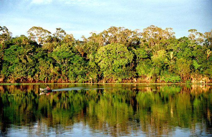 800px-Amazonia