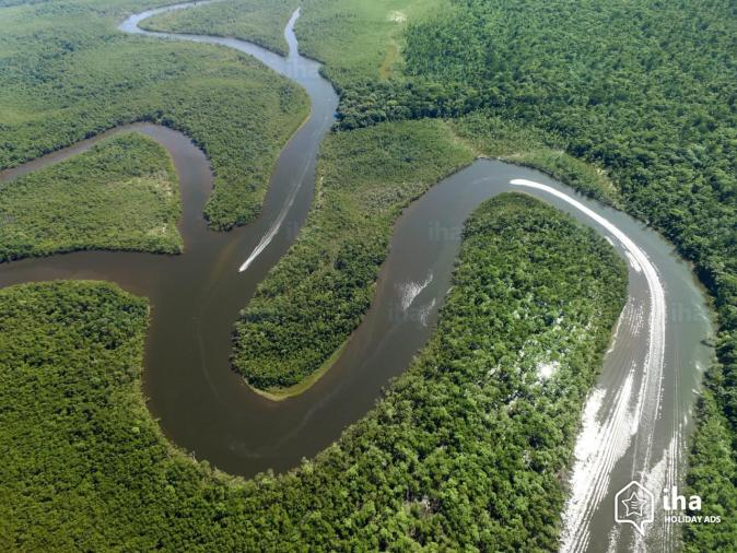 Maynas-province-Aerial-view-of-the-amazon-forest-in-the-province-of-maynas
