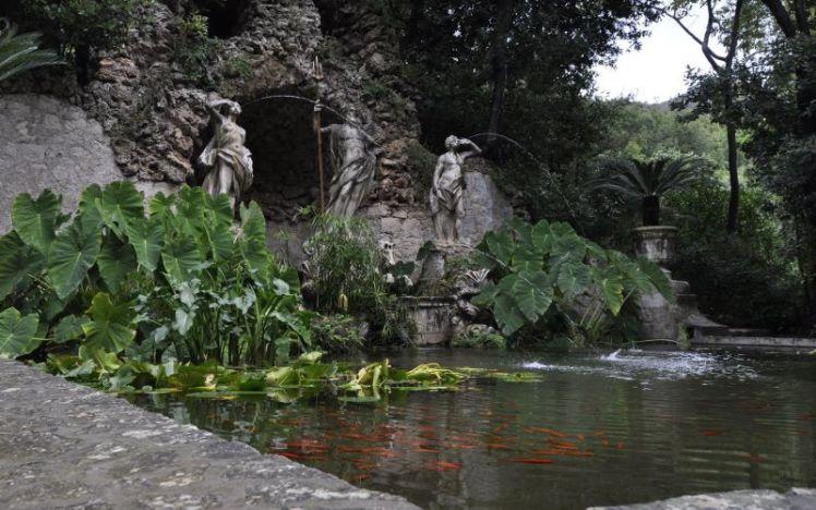 2009_10_17_croatia_dubrovnik_trsteno_arboretum_18