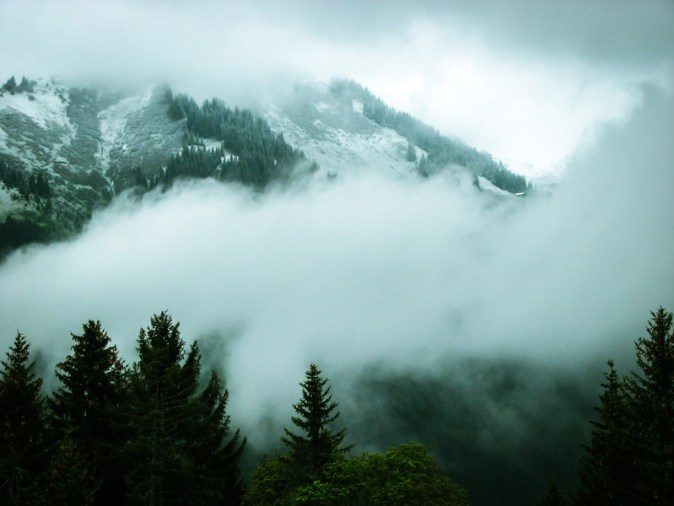 mountain-landscape-with-forest-and-clouds-and-fog-new-zealand