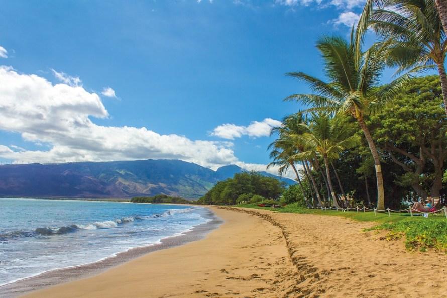 Beach Kihei Maui Hawaii Landscape Sand Palms
