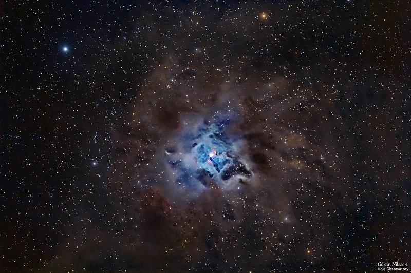 800px-Iris_Nebula_(NGC7023)_by_Göran_Nilsson,_Hole_Observatory