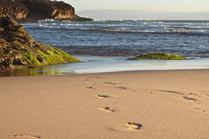 Nature Ocean Cascais Coast Portugal Sea Summer