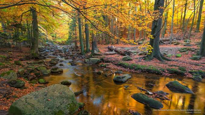 harz-national-park-in-autumn-saxony-anhalt-germany-wallpaper-preview