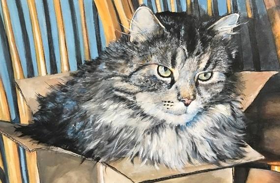Cat in the Box Portrait