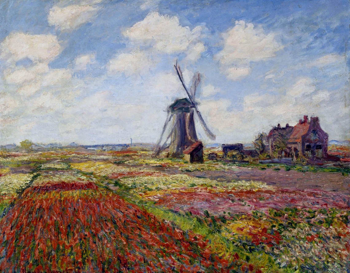 fields-of-tulip-with-the-rijnsburg-windmill