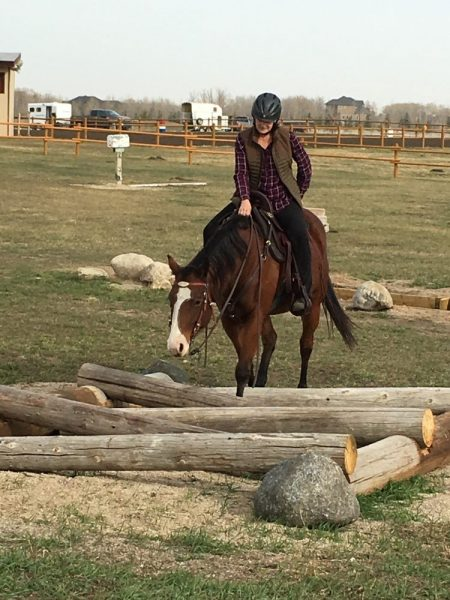 Horse and rider maneuver cross buck obstacle on an outdoor trail