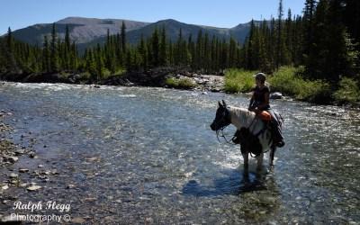 Kananaskis on Horseback Day 2