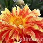 Заказать картину-Цветы1