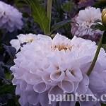 Заказать картину-Цветы19