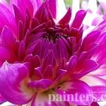 Заказать картину-Цветы8