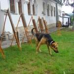 Охранник живописи