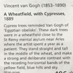 Винсент Ван Гог-описание
