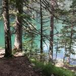 Черногория, пейзаж, заказать картину маслом2