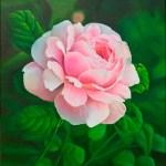Роза в саду, холст, масло, 50х70, 2018 г. -Анастасия Алёхина