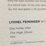 Вена,Австрия,художественнй музей Альбертина, картины на заказ