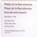 Пейзажи Пикассо-Пляж Барселонета
