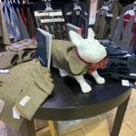 Серьёзная одежда для серьёзных шотландцев ))