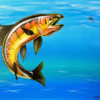 """""""German Brown Trout"""" Airbrush and Paint Markers 11"""" x 14"""" Canvas pads Art by: Anh Pham Art supplies by: usartsupply.com"""