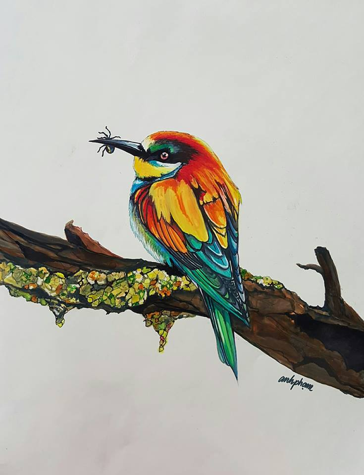 Painting a Bee Eater with Markers