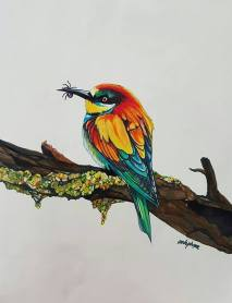 bee eater master markers